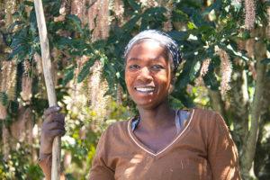 Oribi-macadamia farmer-Fairview Farms 14