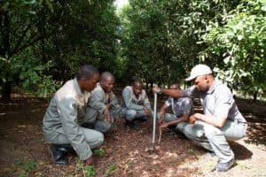 Learning how to sample soils are, from left, Cyril Maseko, Khethukuthula Maseko, Sabelo Fankomo, Xolani Msithini and Zwakele Silubane.
