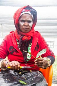Noxolisa Sigaga prepares a shoot for micro-grafting.