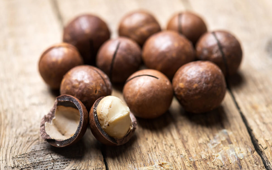 macadamia-nut-auction-buyer-sellers-marketplace-south-africa