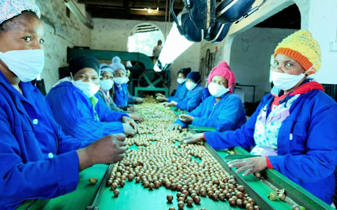 Mac sector rallies to protect workers from coronavirus