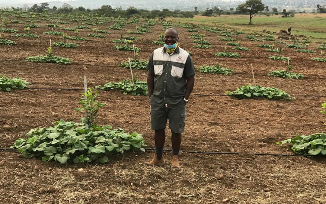 Gene Likhanya-Crowd-farming links South African farmers with investors