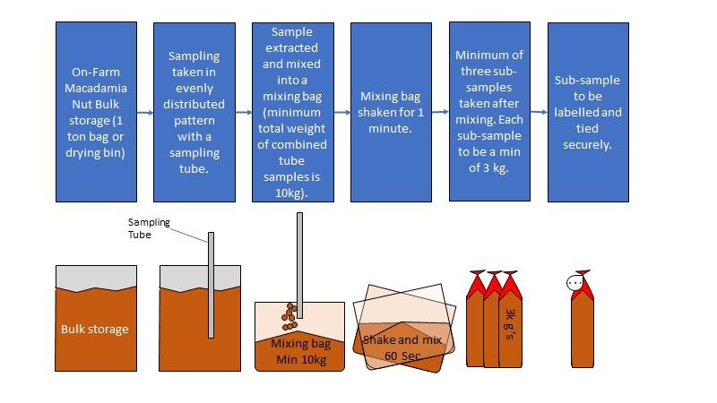nut sample Process